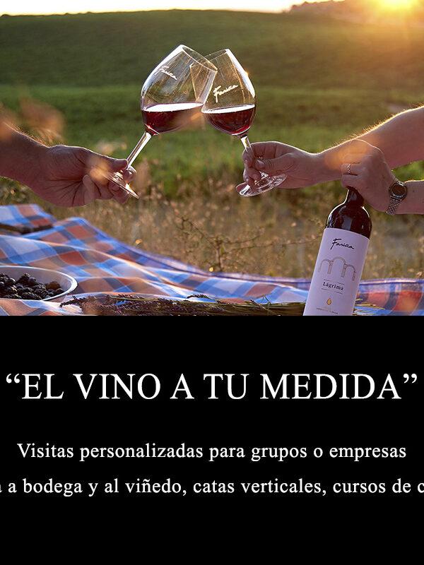 visita el vino a tu medida